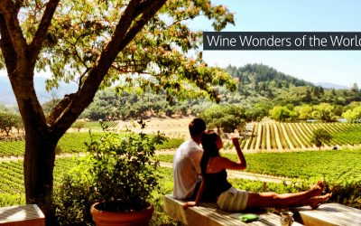 Plan Your Next Wine Vacation With Eastern Travels